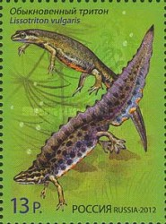 [Fauna - Newts - Joint Issue with Belarus, Typ BMM]