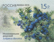 [Flora of Russia - Cones. Self Adhesive Stamps, Typ BPP]
