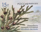 [Flora of Russia - Cones. Self Adhesive Stamps, Typ BPQ]