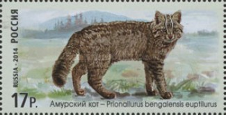 [Fauna of Russia - Wildcats, Typ BWD]