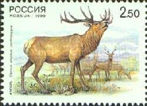 [Deers.Russia-China Joint Issue, Typ VJ]