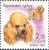 [Decorative Dogs, Typ ZV]