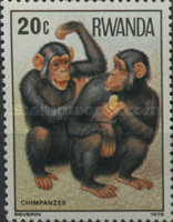 [Apes and Monkeys, Typ ACF]