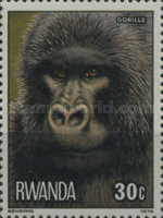 [Apes and Monkeys, Typ ACG]