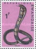 [Snakes, Typ CO]