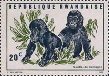 [Local Fauna - Mountain Gorilla, Typ IT]