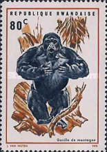 [Local Fauna - Mountain Gorilla, Typ IW]