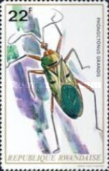 [Insects, Typ OI]