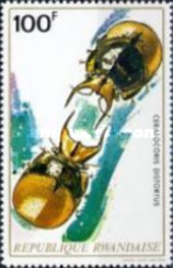 [Insects, Typ OK]