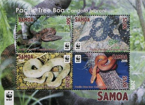 [WWF - Snakes, The Pacific Tree Boa, Typ ]
