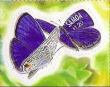 [Butterflies - Self-Adhesive, type AFT]