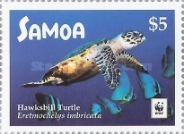 [WWF - Hawksbill Turtle, Typ AUP]