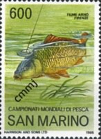 [World Angling Championships, Florence, Typ AKR]