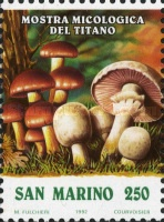 [Mushrooms Exhibition, Typ ARX]