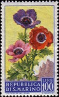 [Flowers & Monte Titano, Typ JF]