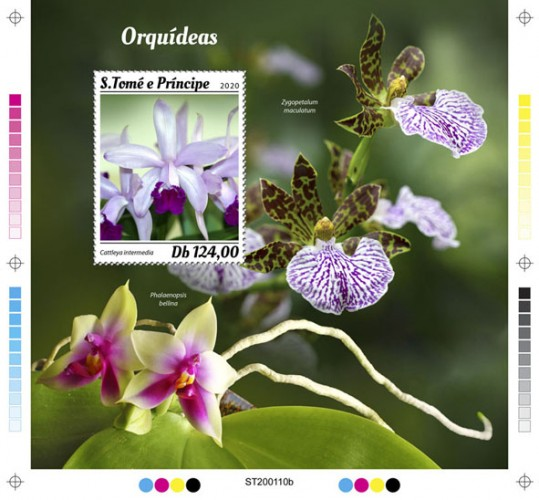 [Flowers - Orchids, type ]