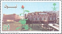 [Saudi Cities - Tabuk, type BDP]