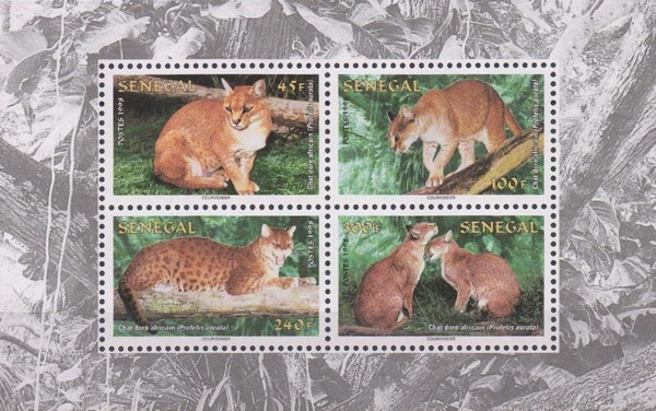 [World Nature Protection - African Golden Cat, Typ ]