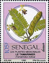 [Medicinal Plants, type AIL]