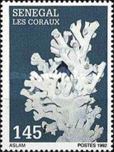 [Corals, type ANB]