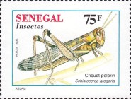 [Insects, Typ AVH]