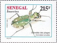 [Insects, Typ AVI]