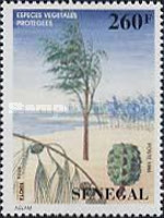 [Protected Trees, Typ AVS]