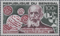 [Airmail - The 100th Anniversary of Discovery of Leprosy Bacillus by Gerhard Hansen, type NG]