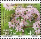 [Definitive - Flower with Bee, type ADZ]