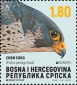 [EUROPA Stamps - National Birds, type AOC]