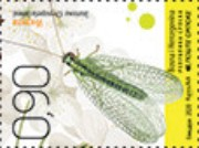 [Insects, type AQC]