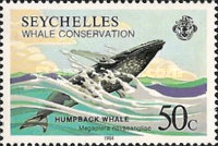[Whale Conservation, Typ ON]