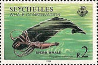 [Whale Conservation, Typ OO]