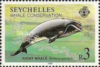 [Whale Conservation, Typ OP]