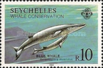 [Whale Conservation, Typ OQ]