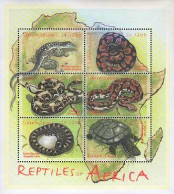 [African Reptiles, Typ ]
