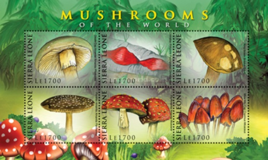 [Flora - Mushrooms of the World, Typ ]