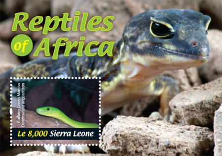 [Fauna - Reptiles of Africa, Typ ]