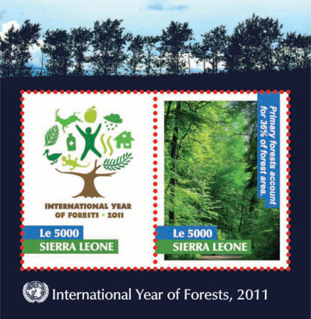 [International Year of Forests, Typ ]