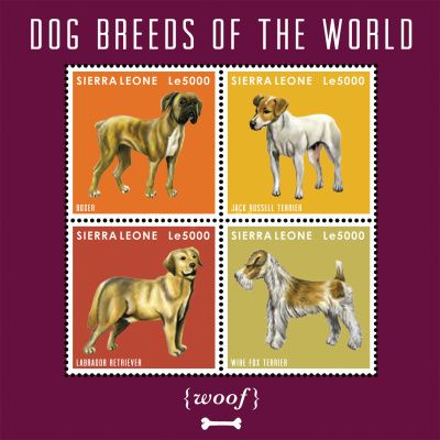 [Dog Breeds of the World, Typ ]