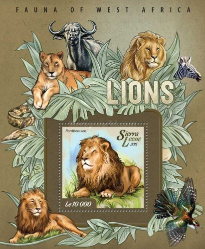 [Fauna of West Africa - Lions, Typ ]