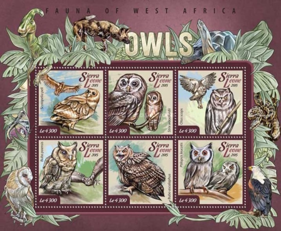 [Fauna of West Africa - Owls, Typ ]