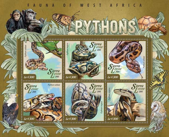 [Fauna of West Africa - Pythons, Typ ]