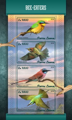 [Birds - Bee-Eaters, type ]