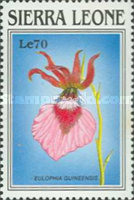 [Orchids of Sierra Leone, Typ ACN]