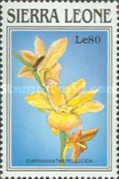 [Orchids of Sierra Leone, Typ ACO]
