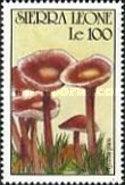 [Fungi, Typ ANY]