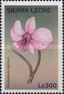 [Orchids of the World, Typ CMW]
