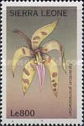 [Orchids of the World, Typ CMY]
