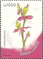 [Flowers - African Orchids, Typ FUJ]